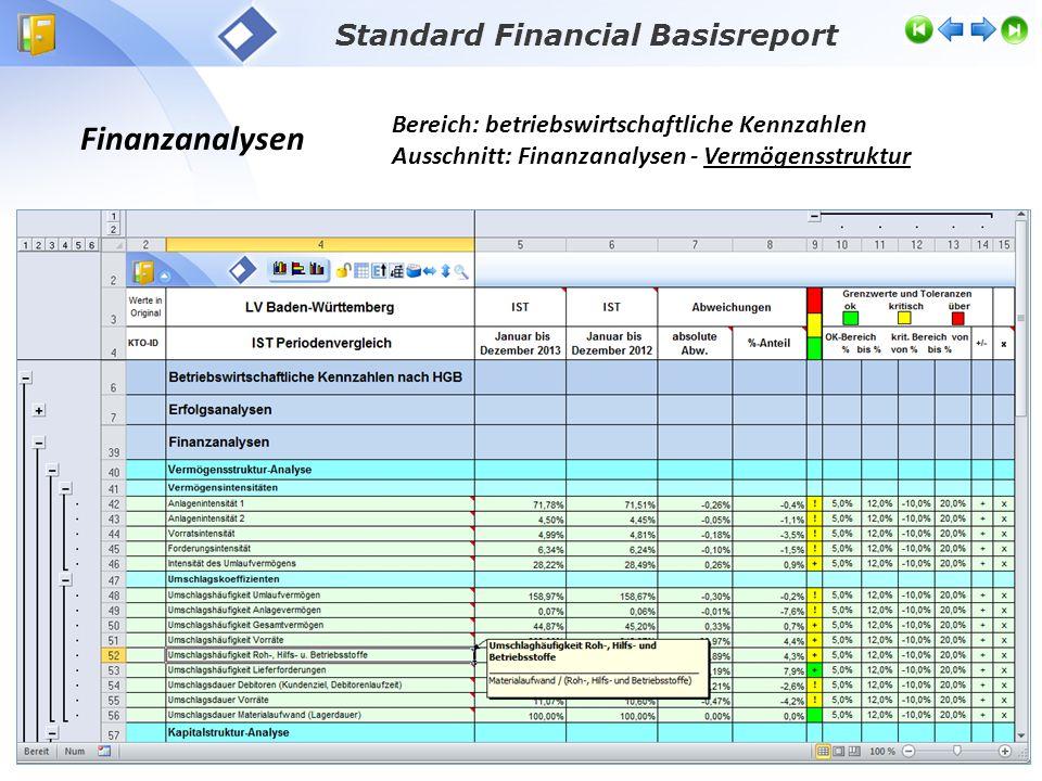 Finanzanalysen Bereich: betriebswirtschaftliche Kennzahlen Ausschnitt: Finanzanalysen - Vermögensstruktur Standard Financial Basisreport