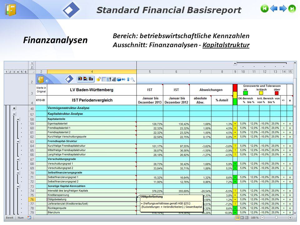 Finanzanalysen Bereich: betriebswirtschaftliche Kennzahlen Ausschnitt: Finanzanalysen - Kapitalstruktur Standard Financial Basisreport