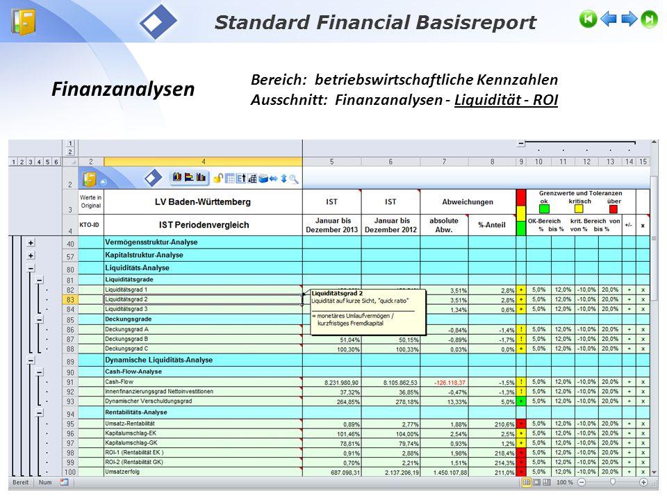 Finanzanalysen Bereich: betriebswirtschaftliche Kennzahlen Ausschnitt: Finanzanalysen - Liquidität - ROI Standard Financial Basisreport