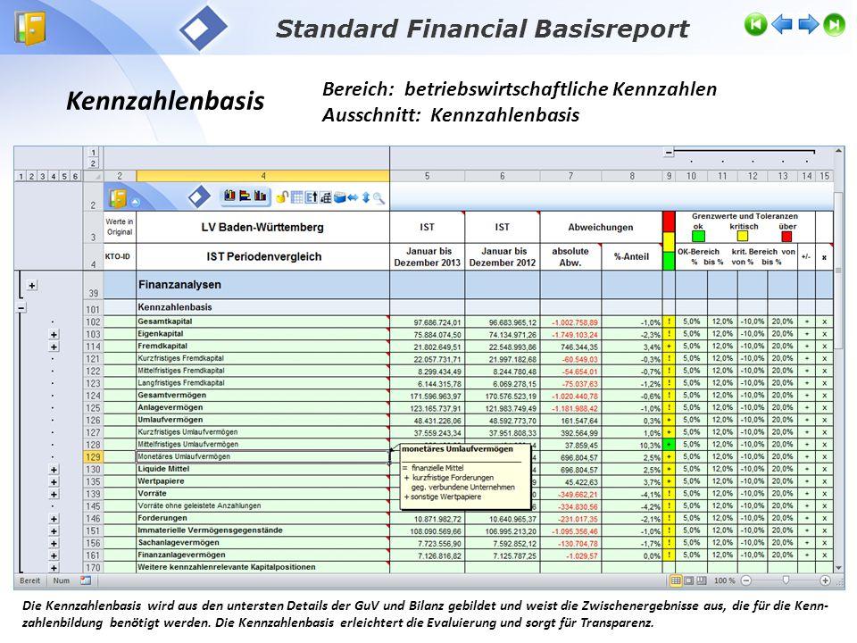 Kennzahlenbasis Bereich: betriebswirtschaftliche Kennzahlen Ausschnitt: Kennzahlenbasis Standard Financial Basisreport Die Kennzahlenbasis wird aus de