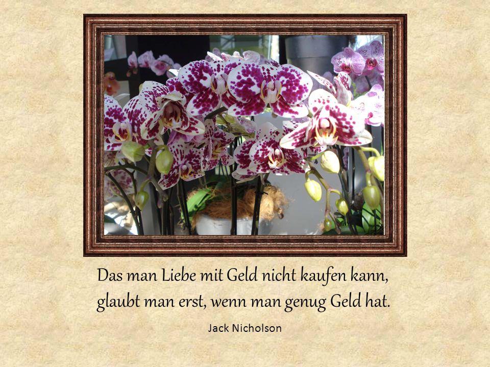 Das man Liebe mit Geld nicht kaufen kann, glaubt man erst, wenn man genug Geld hat. Jack Nicholson