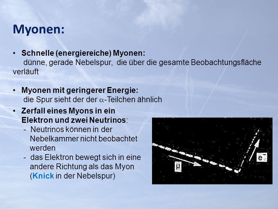 Myonen: Schnelle (energiereiche) Myonen: dünne, gerade Nebelspur, die über die gesamte Beobachtungsfläche verläuft Myonen mit geringerer Energie: die Spur sieht der der  -Teilchen ähnlich Zerfall eines Myons in ein Elektron und zwei Neutrinos: - Neutrinos können in der Nebelkammer nicht beobachtet werden - das Elektron bewegt sich in eine andere Richtung als das Myon (Knick in der Nebelspur)