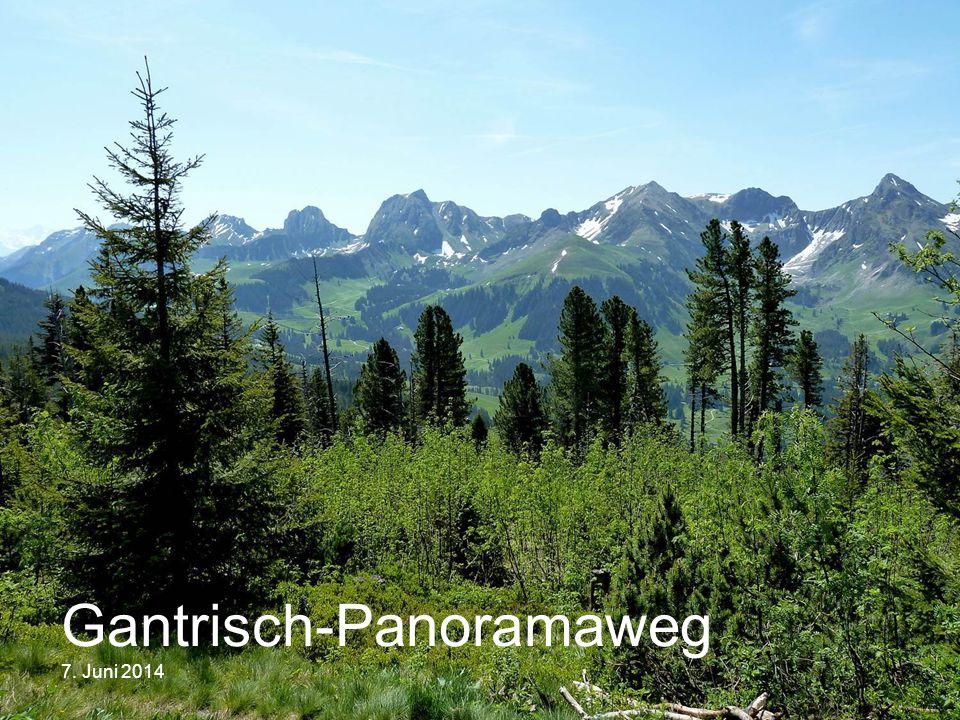 Gantrisch-Panoramaweg 7. Juni 2014
