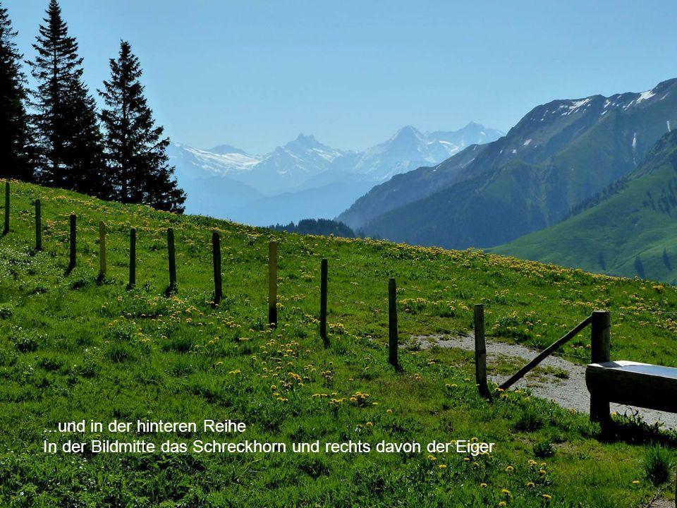 ...und in der hinteren Reihe In der Bildmitte das Schreckhorn und rechts davon der Eiger