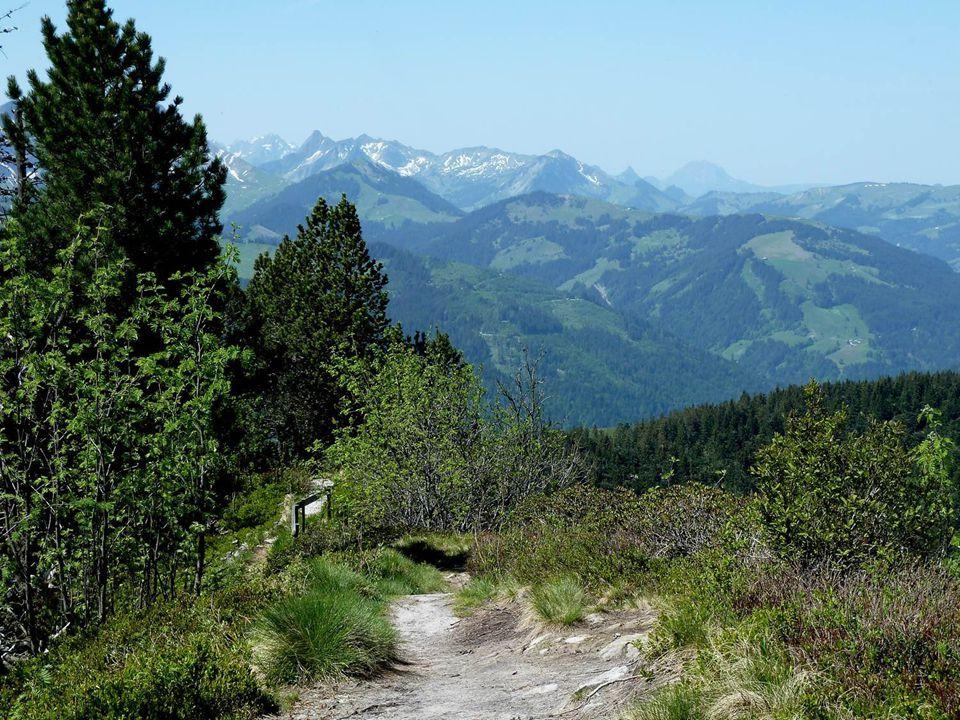 S' Vreneli ab em Guggisberg! Dorf Guggisberg und rechts davon das Guggershorn