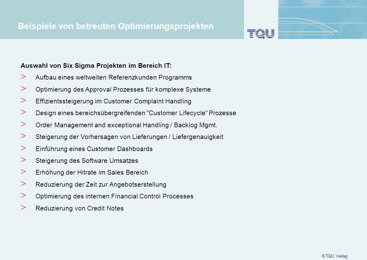 11 Beispiele von betreuten Optimierungsprojekten Auswahl von Six Sigma Projekten im Bereich IT: > Aufbau eines weltweiten Referenzkunden Programms > O