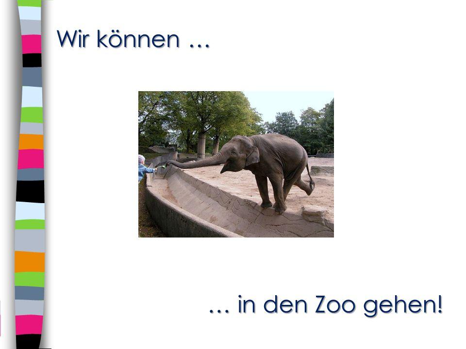 Wir können … … in den Zoo gehen! … in den Zoo gehen!