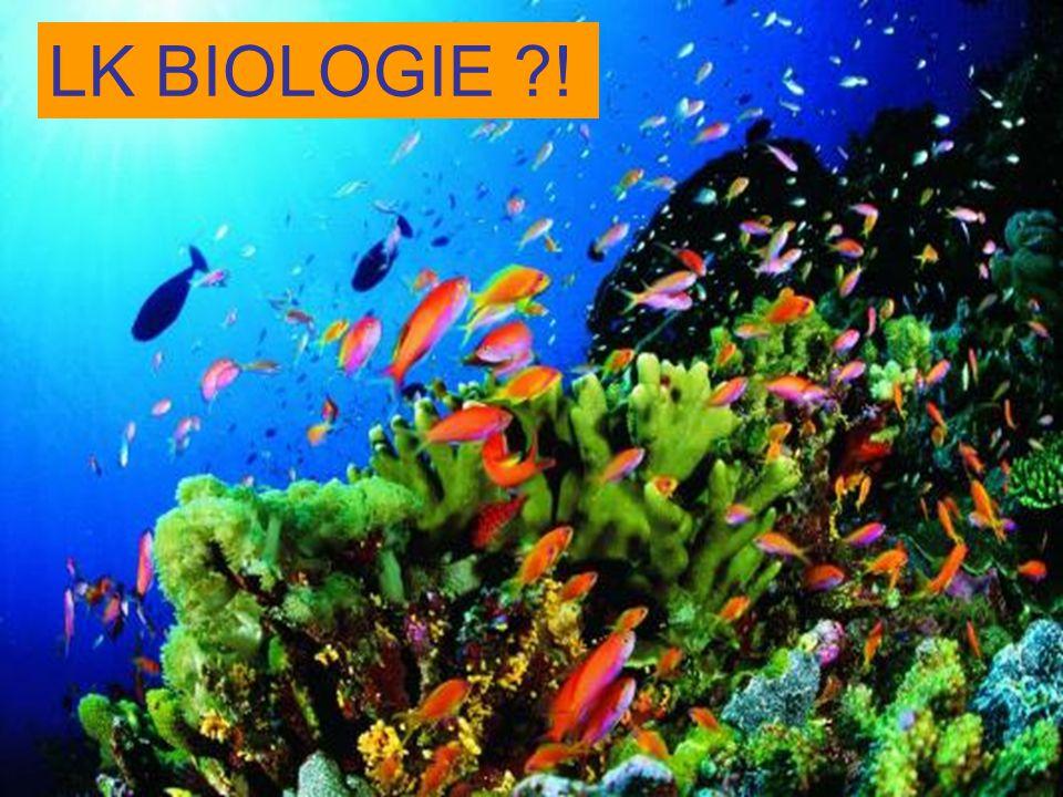 LK BIOLOGIE ?!