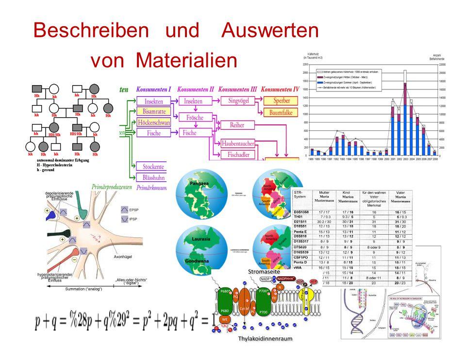 Beschreiben und Auswerten von Materialien