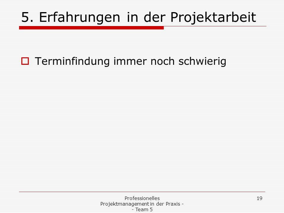 19Professionelles Projektmanagement in der Praxis - - Team 5 5. Erfahrungen in der Projektarbeit  Terminfindung immer noch schwierig