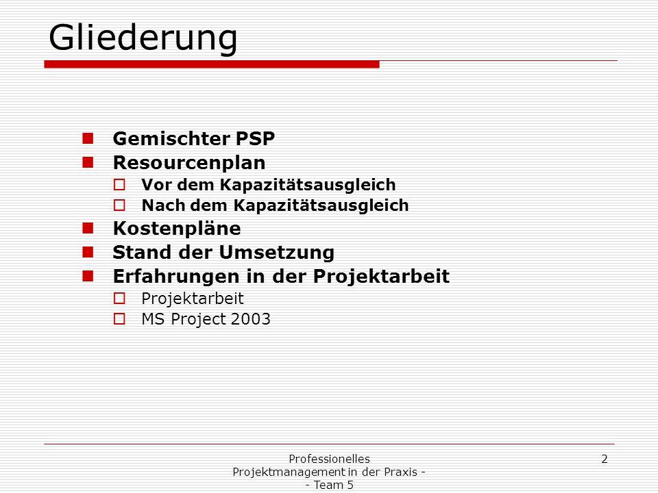 2Professionelles Projektmanagement in der Praxis - - Team 5 Gliederung Gemischter PSP Resourcenplan  Vor dem Kapazitätsausgleich  Nach dem Kapazität