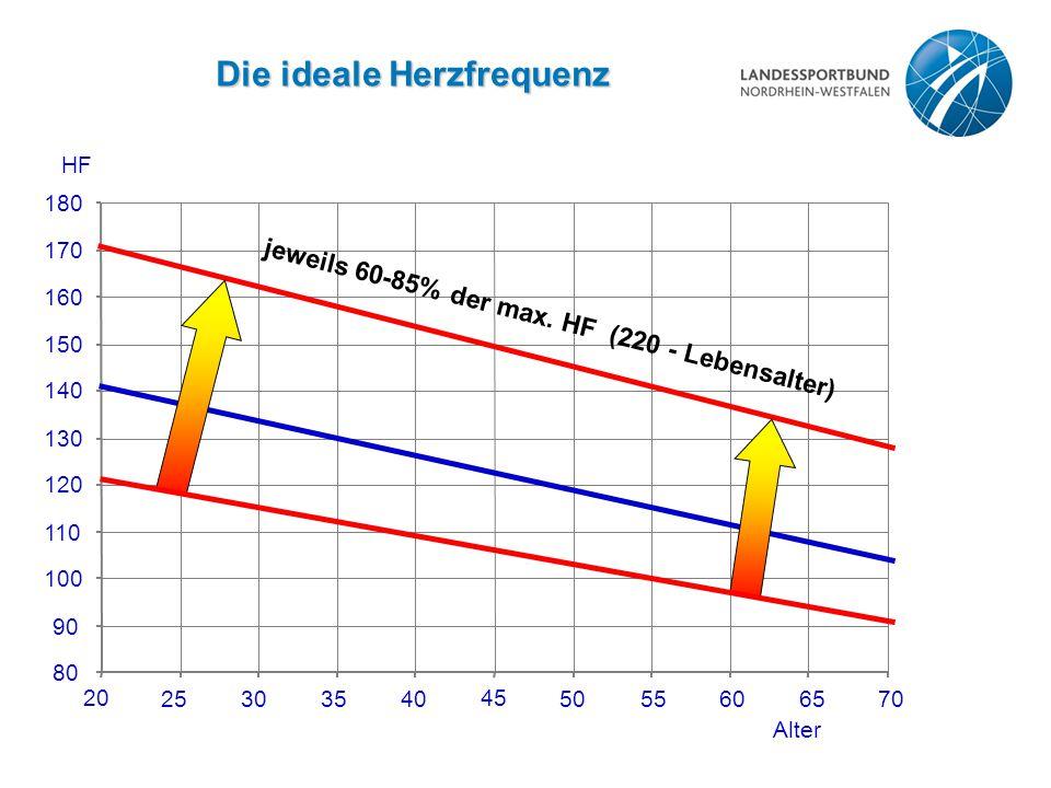 Die ideale Herzfrequenz 20 25303540 45 5055606570 Alter 80 90 100 110 120 130 140 150 160 170 180 HF jeweils 60-85% der max. HF (220 - Lebensalter)