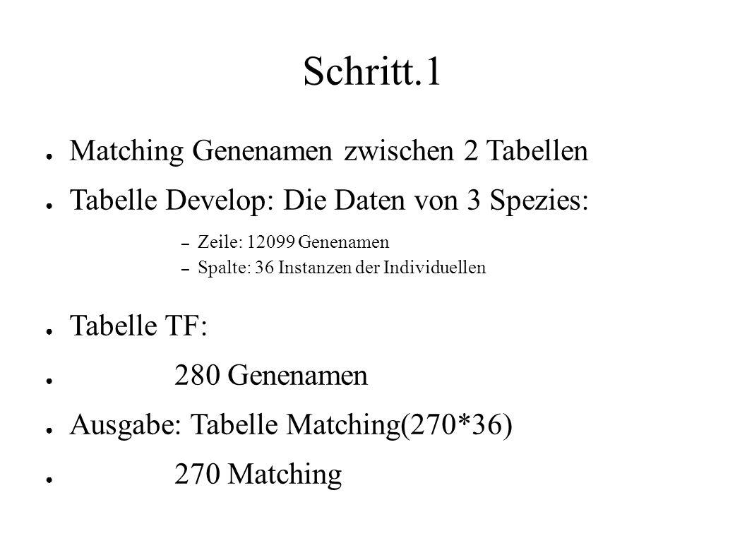 Schritt.1 ● Matching Genenamen zwischen 2 Tabellen ● Tabelle Develop: Die Daten von 3 Spezies: – Zeile: 12099 Genenamen – Spalte: 36 Instanzen der Individuellen ● Tabelle TF: ● 280 Genenamen ● Ausgabe: Tabelle Matching(270*36) ● 270 Matching