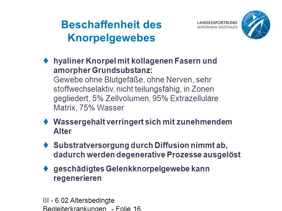 III - 6.02 Altersbedingte Begleiterkrankungen - Folie 16 Beschaffenheit des Knorpelgewebes  hyaliner Knorpel mit kollagenen Fasern und amorpher Grund