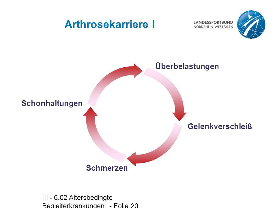 III - 6.02 Altersbedingte Begleiterkrankungen - Folie 20 Arthrosekarriere I Schmerzen Gelenkverschleiß Schonhaltungen Überbelastungen