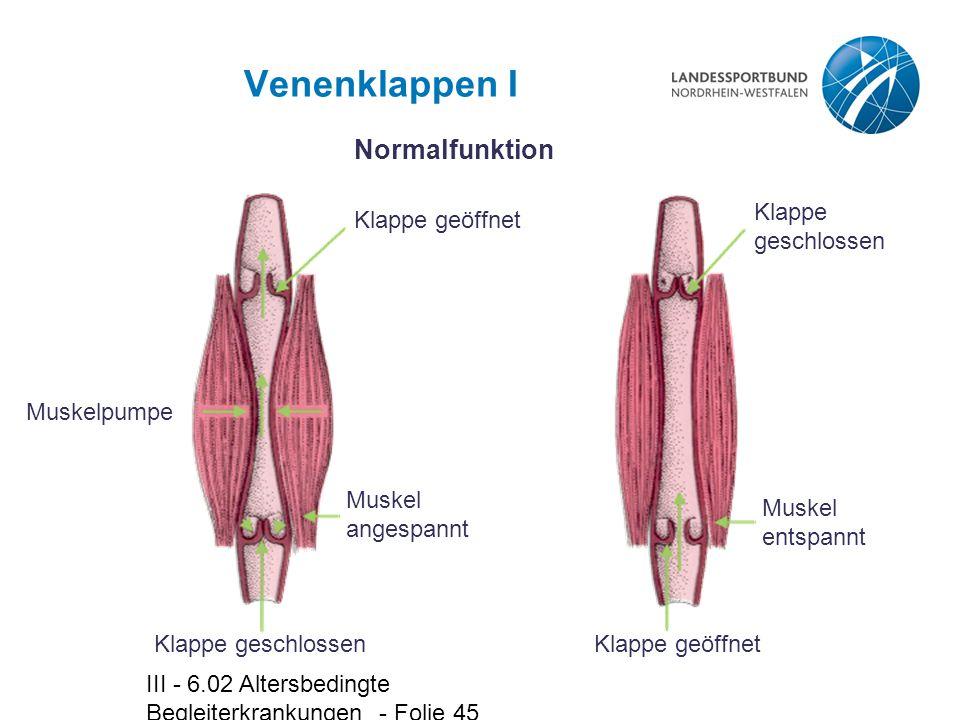III - 6.02 Altersbedingte Begleiterkrankungen - Folie 45 Venenklappen I Muskelpumpe Klappe geschlossen Muskel angespannt Klappe geöffnet Normalfunktio