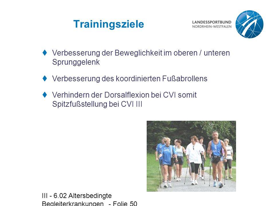 III - 6.02 Altersbedingte Begleiterkrankungen - Folie 50 Trainingsziele  Verbesserung der Beweglichkeit im oberen / unteren Sprunggelenk  Verbesseru