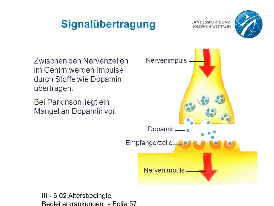 III - 6.02 Altersbedingte Begleiterkrankungen - Folie 57 Signalübertragung Zwischen den Nervenzellen im Gehirn werden Impulse durch Stoffe wie Dopamin