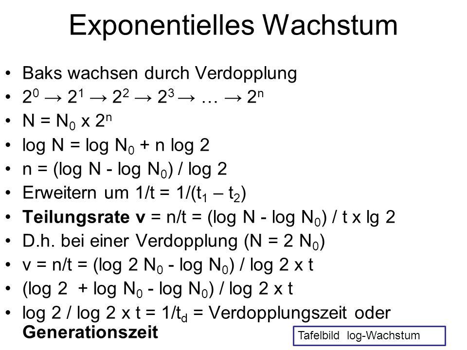 Wachstumsrate und Ertrag Biomasse X = Zellzahl mal BM/ Zelle Wachstumsrate µ = dX/dt x 1/X Integration: X = X 0 x e (µ x t) Eine Verdopplung: 2 X 0 = X 0 x e (µ x td) 2 = e (µ x td) ln 2 = µ x td µ = ln 2 /td = 0,693/td = 0,693 x ν Ertrag: dX/dt = -Y dS/dt Y = Ertragskoeffizient