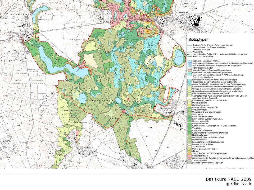 Basiskurs NABU 2009 © Silke Haack Literaturauswahl Grundlagen für die Kartiermethode LANDESUMWELTAMT BRANDENBURG (Hrsg.) (2002): Lebensräume und Arten der FFH-Richtlinie in Branden- burg.