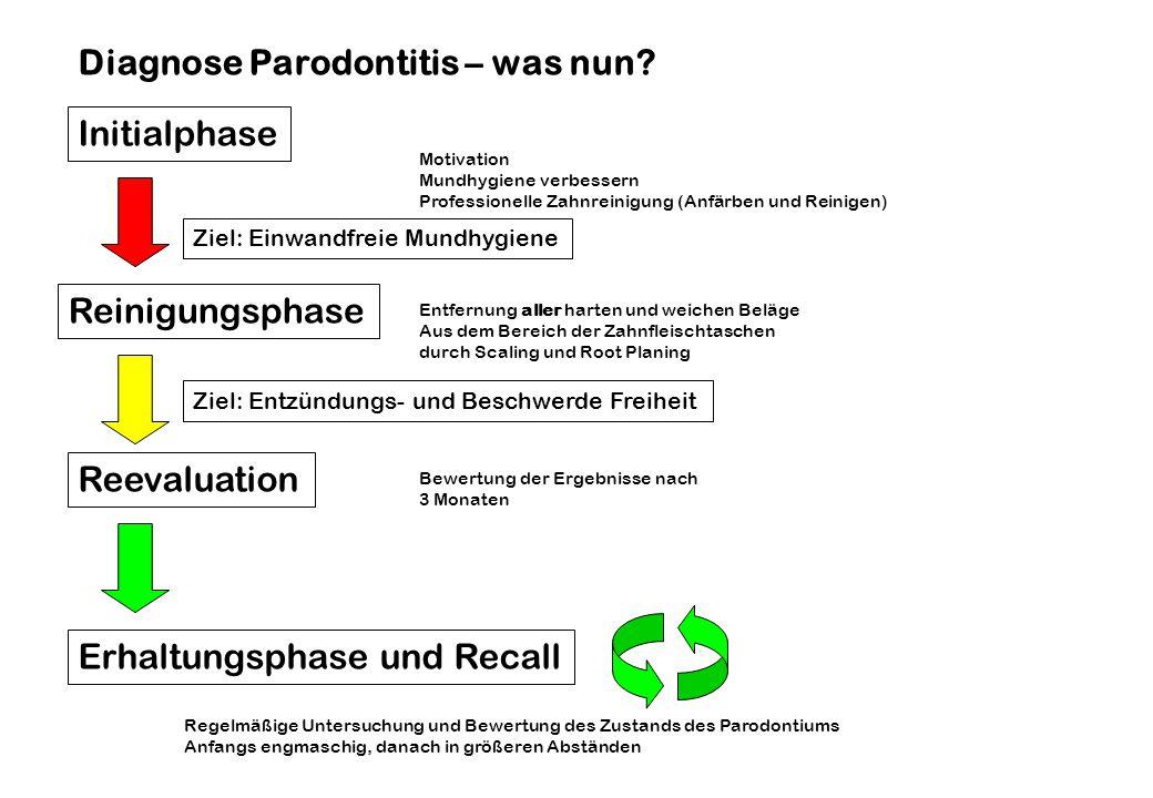 Initialphase Reinigungsphase Erhaltungsphase und Recall Diagnose Parodontitis – was nun? Motivation Mundhygiene verbessern Professionelle Zahnreinigun