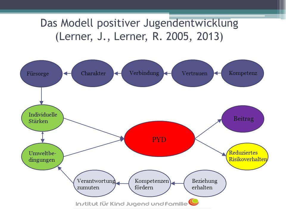 Das Modell positiver Jugendentwicklung (Lerner, J., Lerner, R. 2005, 2013) Individuelle Stärken Umweltbe- dingungen PYD Beitrag Reduziertes Risikoverh