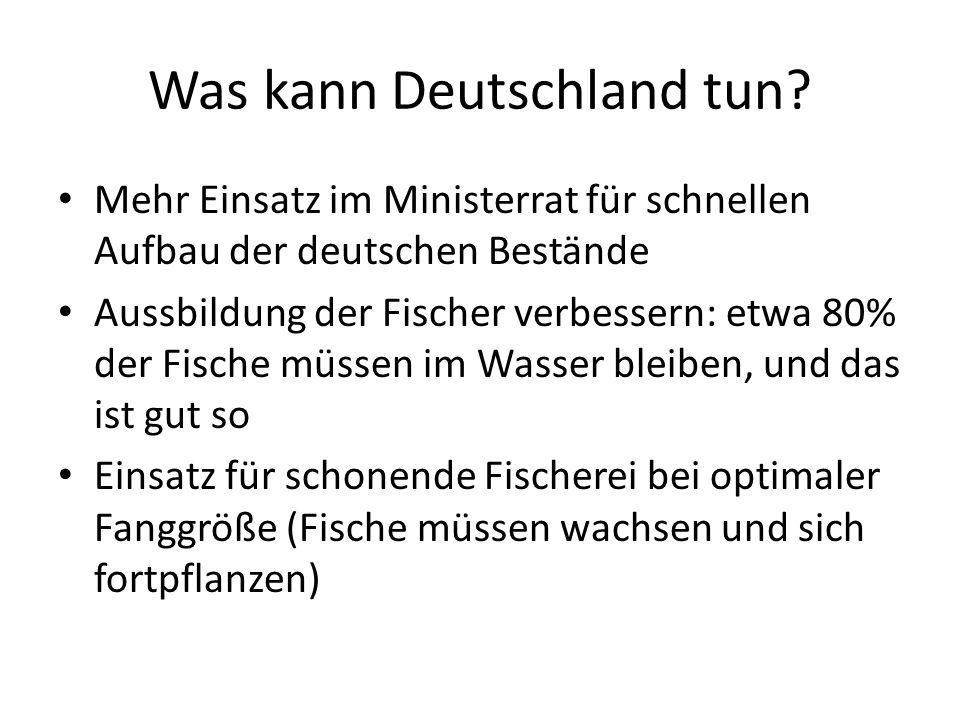 Was kann Deutschland tun? Mehr Einsatz im Ministerrat für schnellen Aufbau der deutschen Bestände Aussbildung der Fischer verbessern: etwa 80% der Fis