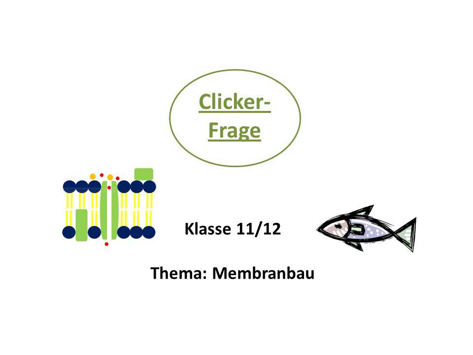 Bei Untersuchungen an der Biomembran hat man festgestellt, dass eine Membran umso fluider, also beweglicher ist, je sperriger die Bauteile der Doppellipidschicht sind.