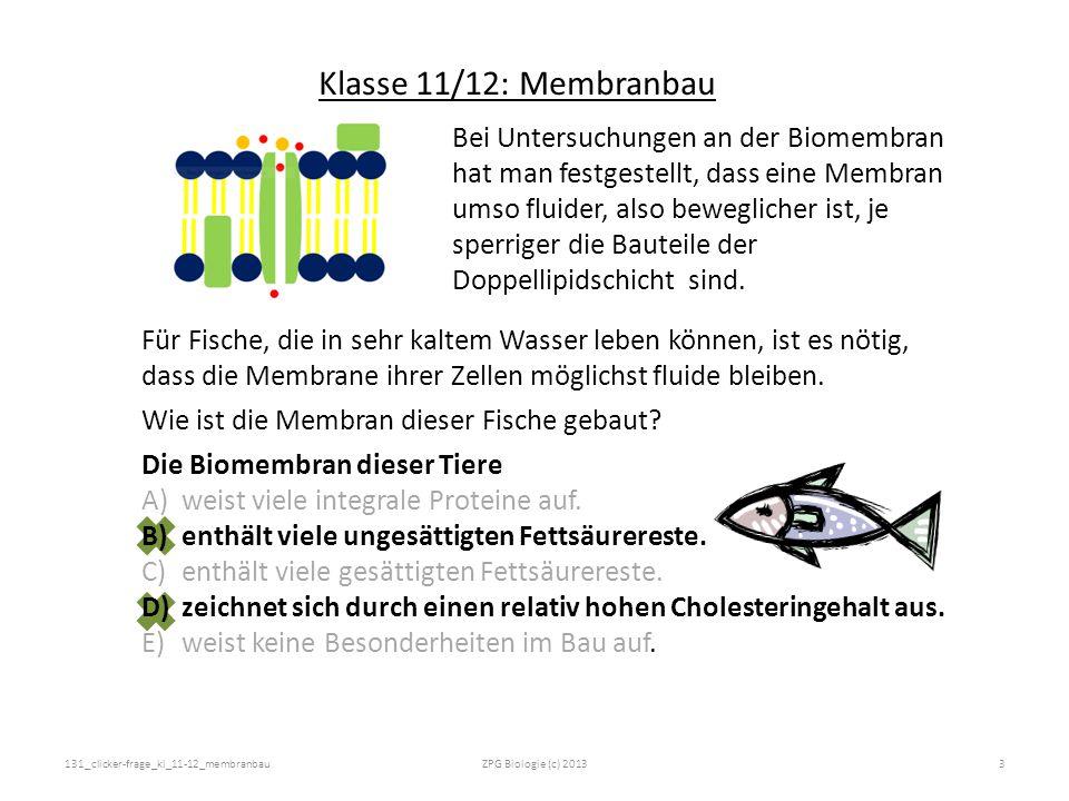 Quellen: - Abbildungen selbst erstellt oder Clip-Arts von Microsoft 131_clicker-frage_kl_11-12_membranbau4ZPG Biologie (c) 2013