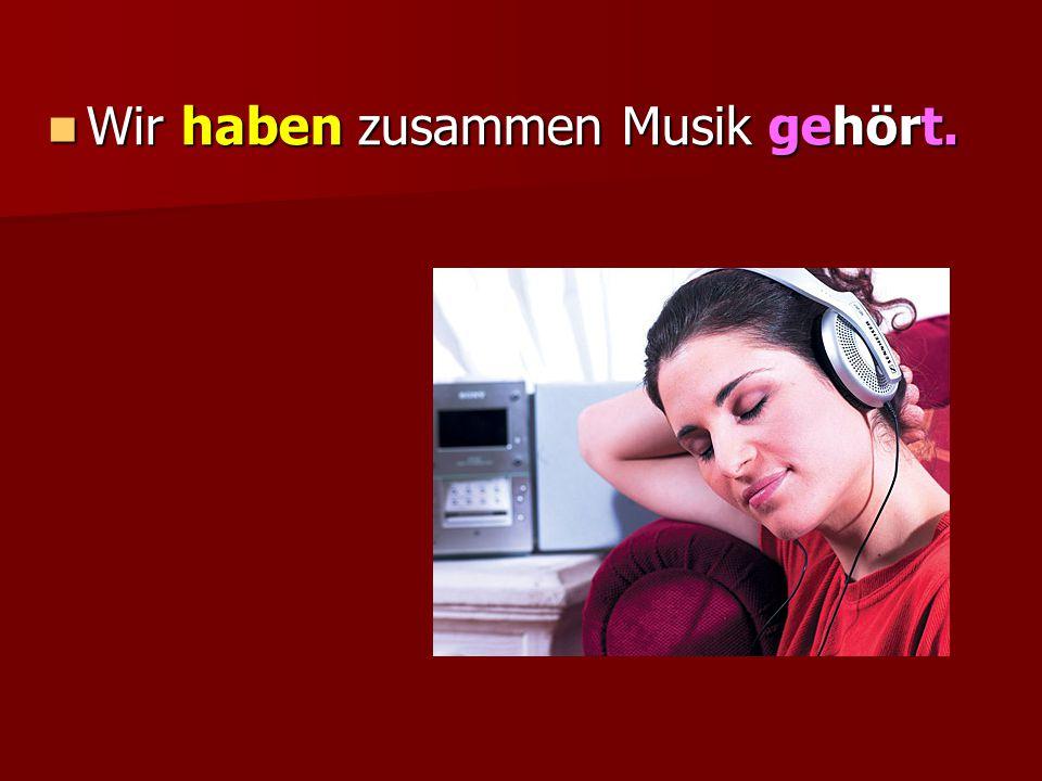 Wir haben zusammen Musik gehört. Wir haben zusammen Musik gehört.