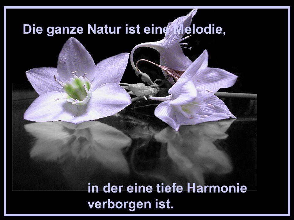 Die Pracht der Gärten aber hat stets die Liebe der Natur zur Voraussetzung.
