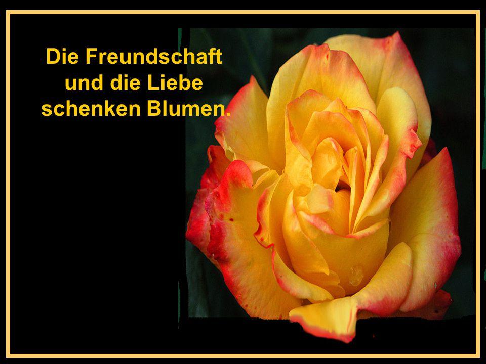 Leute die auf Rosen gebettet sind, verraten sich dadurch, dass sie immerzu über Dornen jammern.