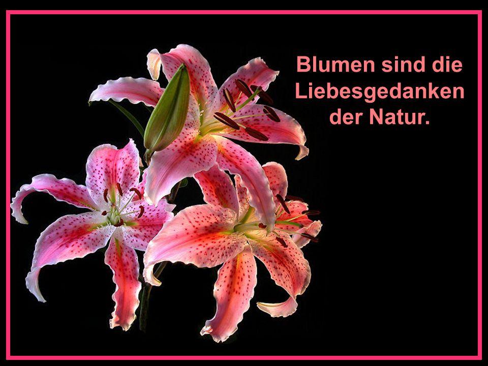 Wenn die Vögel singen und die Blumen ihren Duft verströmen, weiss man, wie das Paradies sein kann.