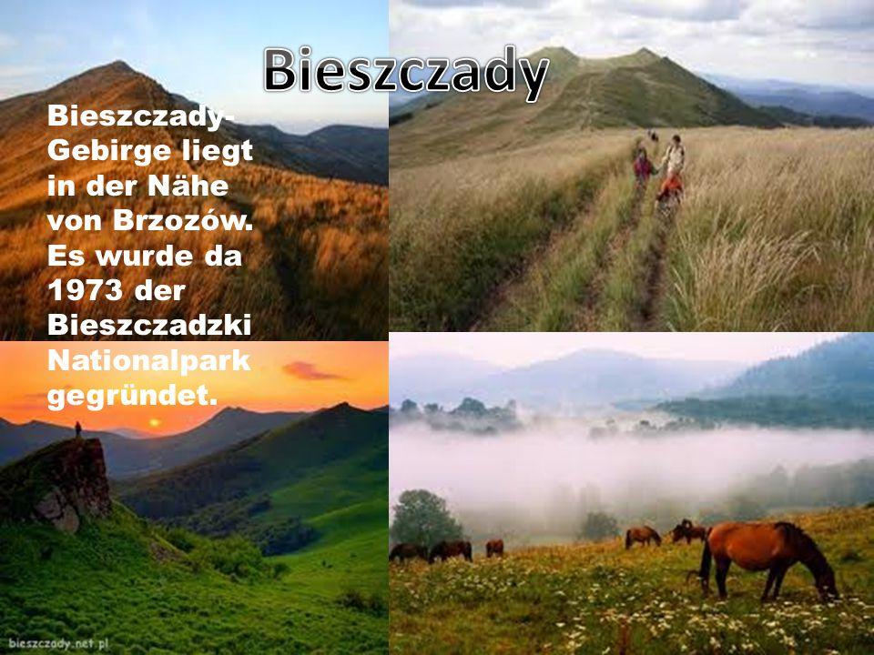 Bieszczady- Gebirge liegt in der Nähe von Brzozów.