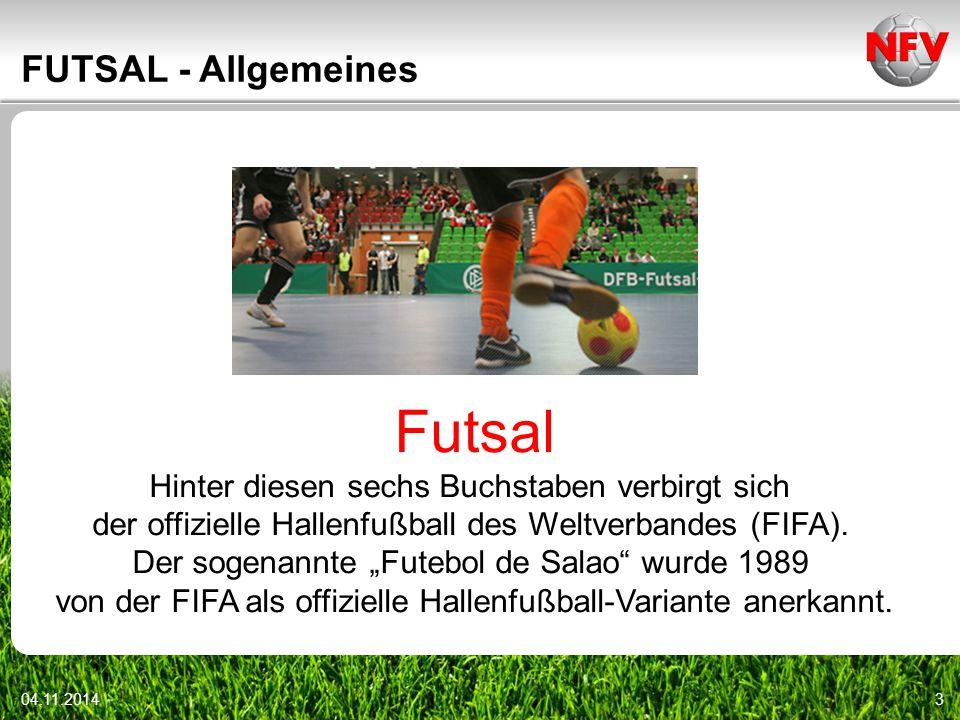 04.11.20144 FUTSAL - Allgemeines seit 2001 Futsal verstärkt im DFB vertreten 2006 erster DFB-Futsal-Cup sprungreduzierter Ball Fair-Play durch schnelles Spiel technische Fertigkeiten und Koordination wichtig
