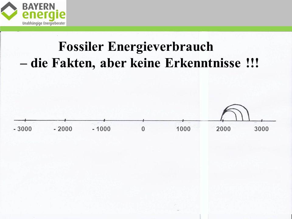 Welcher Energieträger lieferte 1914 den größten Anteil am Brutto-Stromverbrauch .