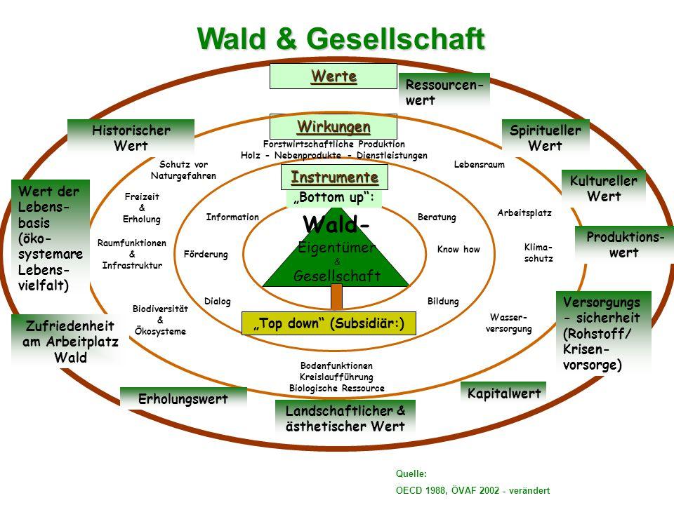 Modul 3 Umwelt & Gesellschaft Der Wald gilt als Spiegel der Gesellschaft .