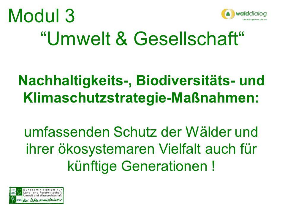 Modul 3 Umwelt & Gesellschaft Internationale und globale Zusammenhänge: Kulturelle und soziale Aspekte der nachhaltigen Waldbewirtschaftung verstärkt beleuchten Innovationen einleiten