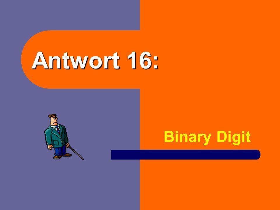 """Frage 16: Was bedeut die Abkürzung """"BIT""""?"""