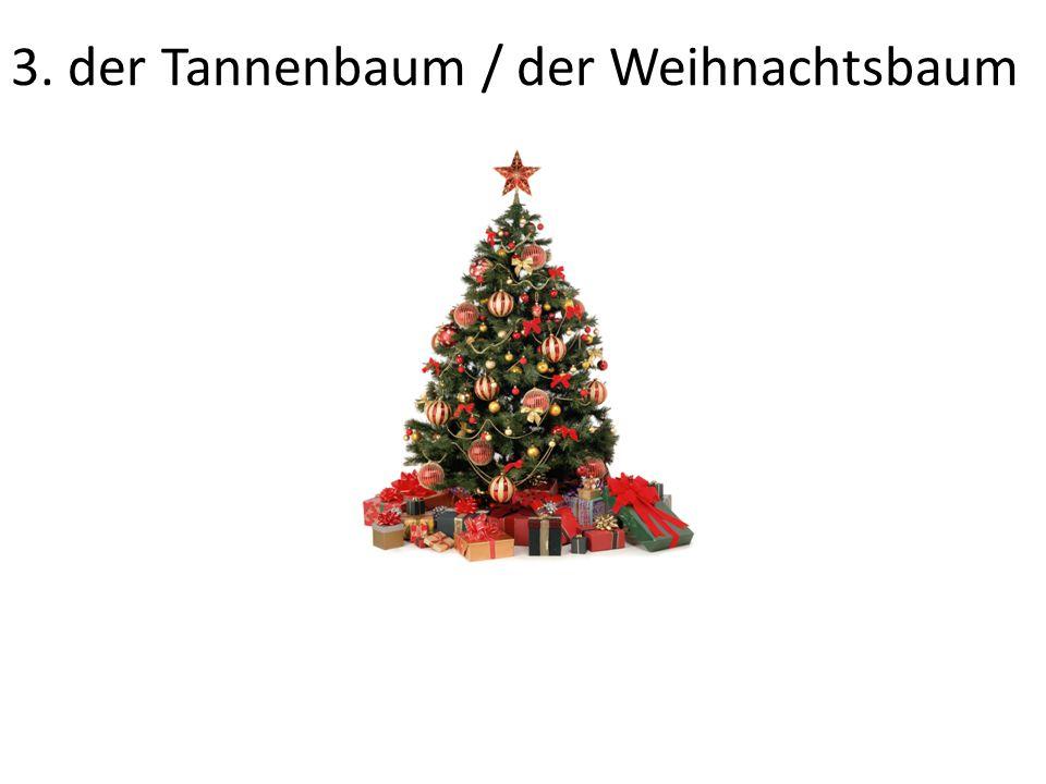 3. der Tannenbaum / der Weihnachtsbaum