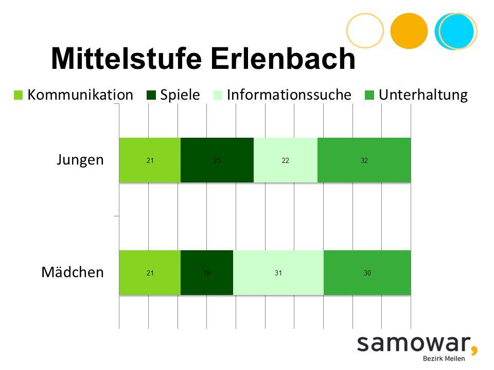 Mittelstufe Erlenbach