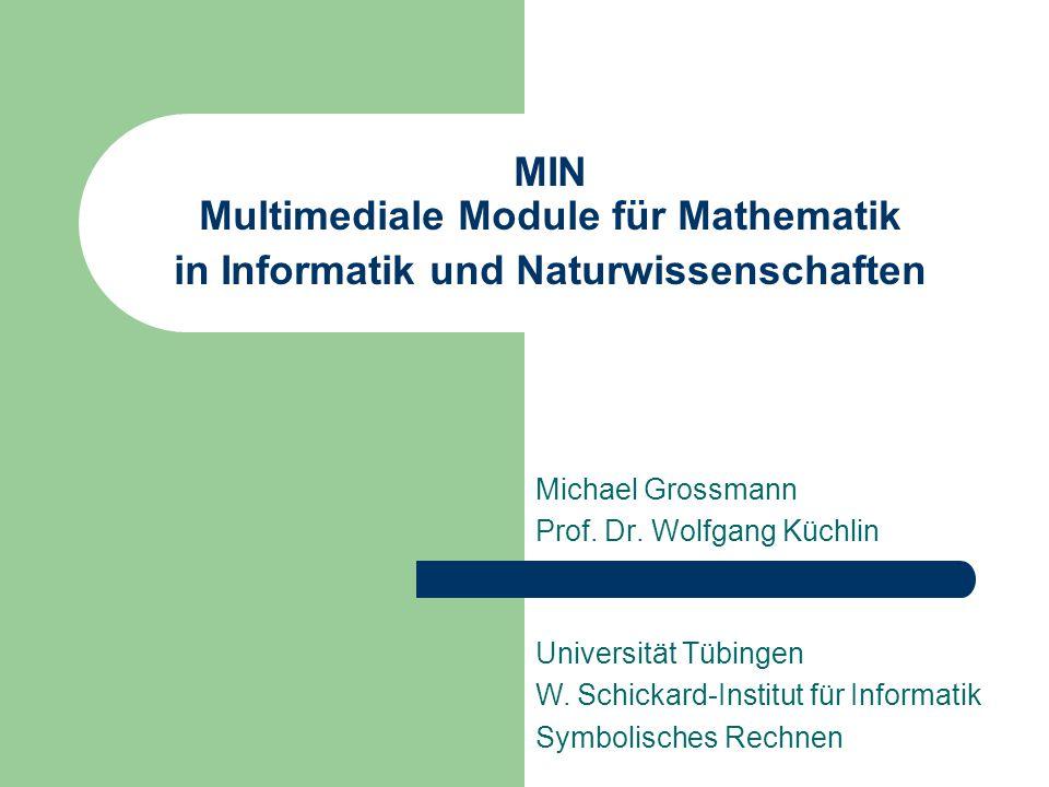 MIN Multimediale Module für Mathematik in Informatik und Naturwissenschaften Michael Grossmann Prof.