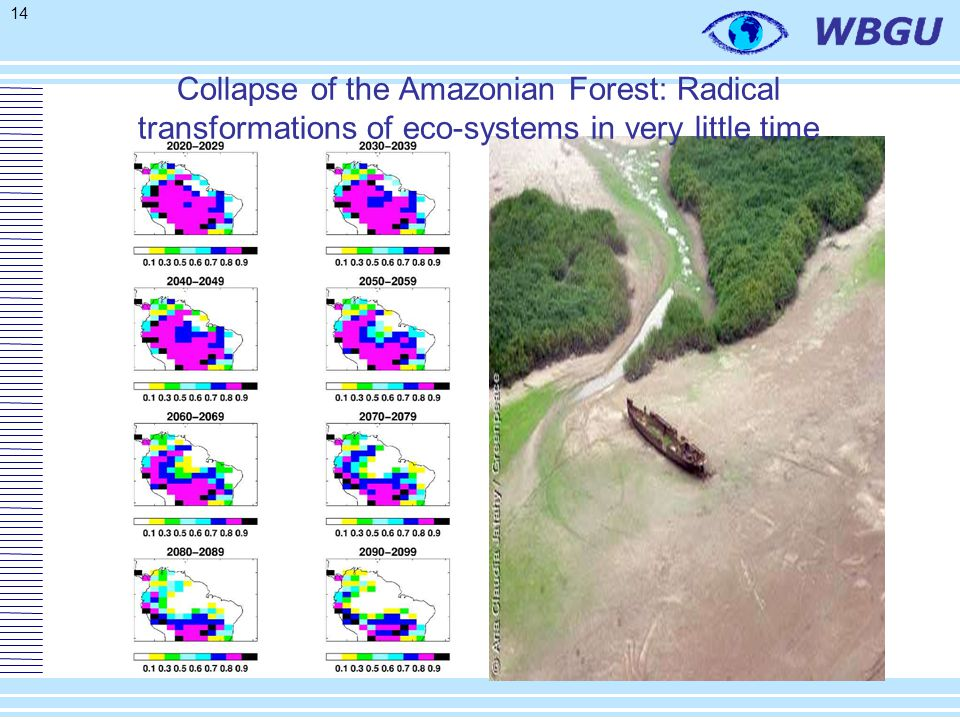 14 Collapse of the Amazonian Forest: Radical transformations of eco-systems in very little time