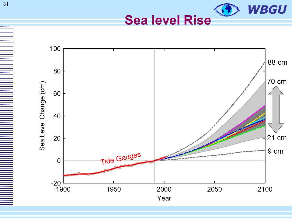 31 9 cm 88 cm 21 cm 70 cm Tide Gauges Sea level Rise