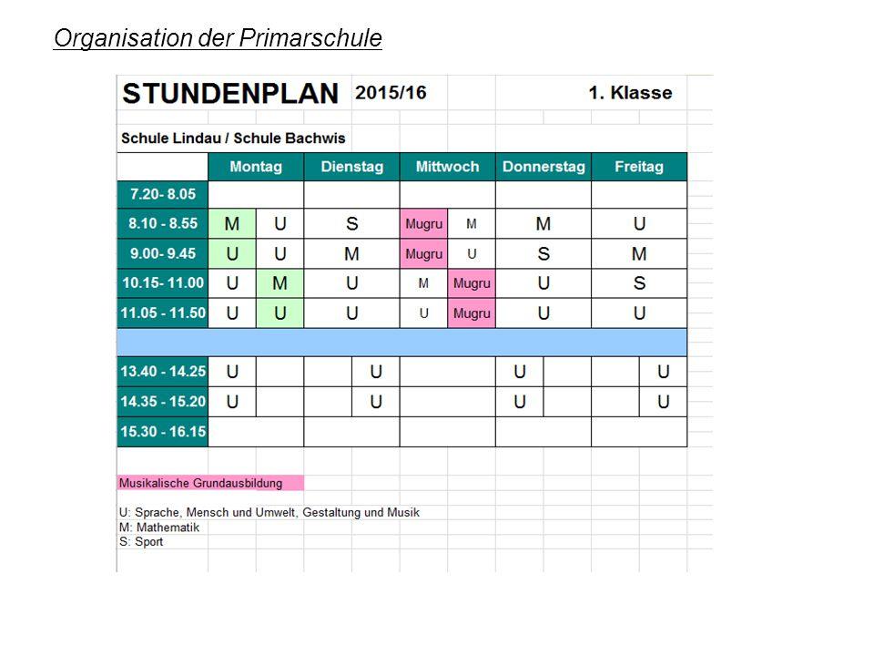 Organisation der Primarschule