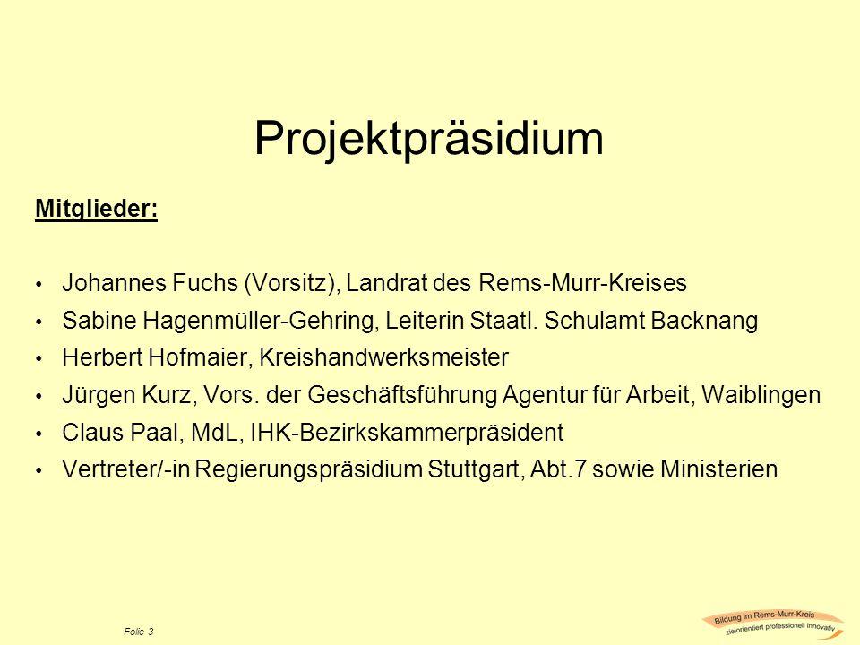 Projektpräsidium Mitglieder: Johannes Fuchs (Vorsitz), Landrat des Rems-Murr-Kreises Sabine Hagenmüller-Gehring, Leiterin Staatl. Schulamt Backnang He