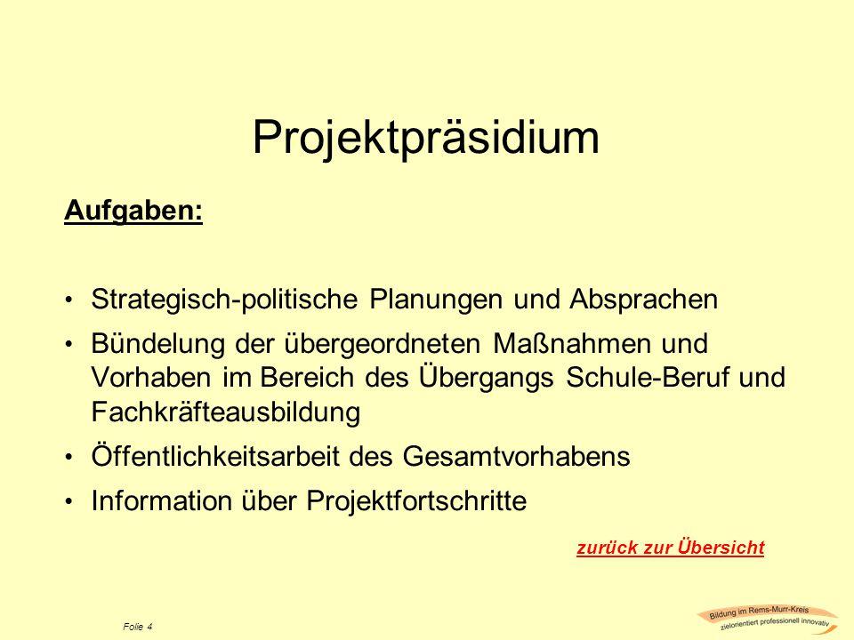 Projektpräsidium Aufgaben: Strategisch-politische Planungen und Absprachen Bündelung der übergeordneten Maßnahmen und Vorhaben im Bereich des Übergang