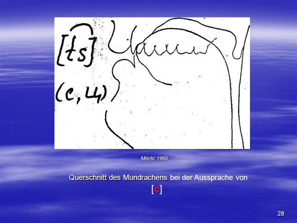28 Querschnitt des Mundrachens Querschnitt des Mundrachens bei der Aussprache von [c] Miletić 1960