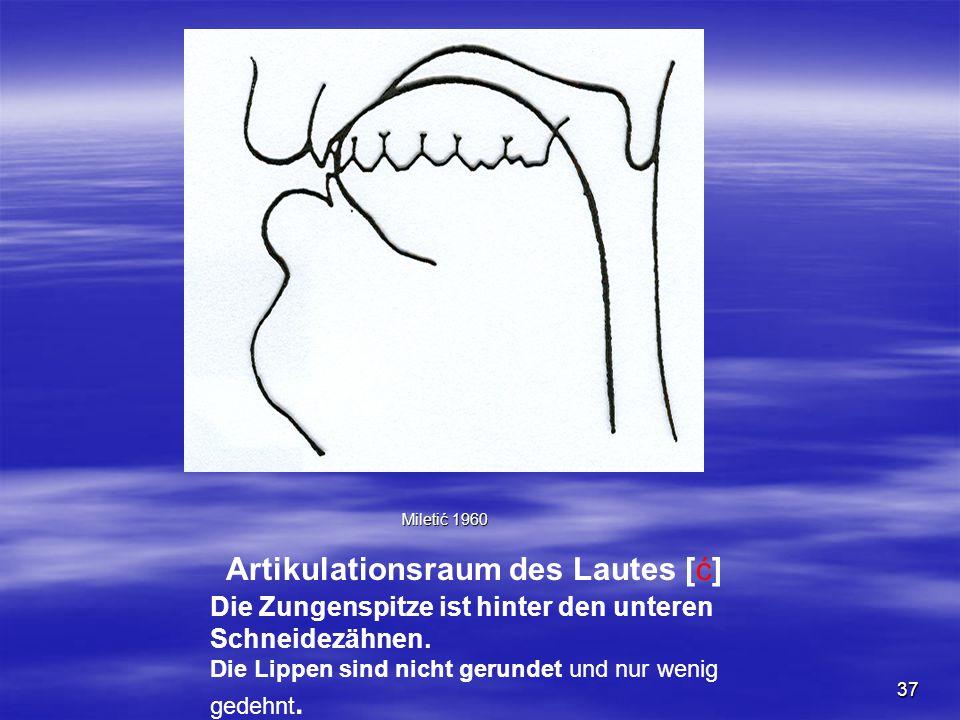 37 Artikulationsraum des Lautes [ć] Miletić 1960 Die Zungenspitze ist hinter den unteren Schneidezähnen. Die Lippen sind nicht gerundet und nur wenig