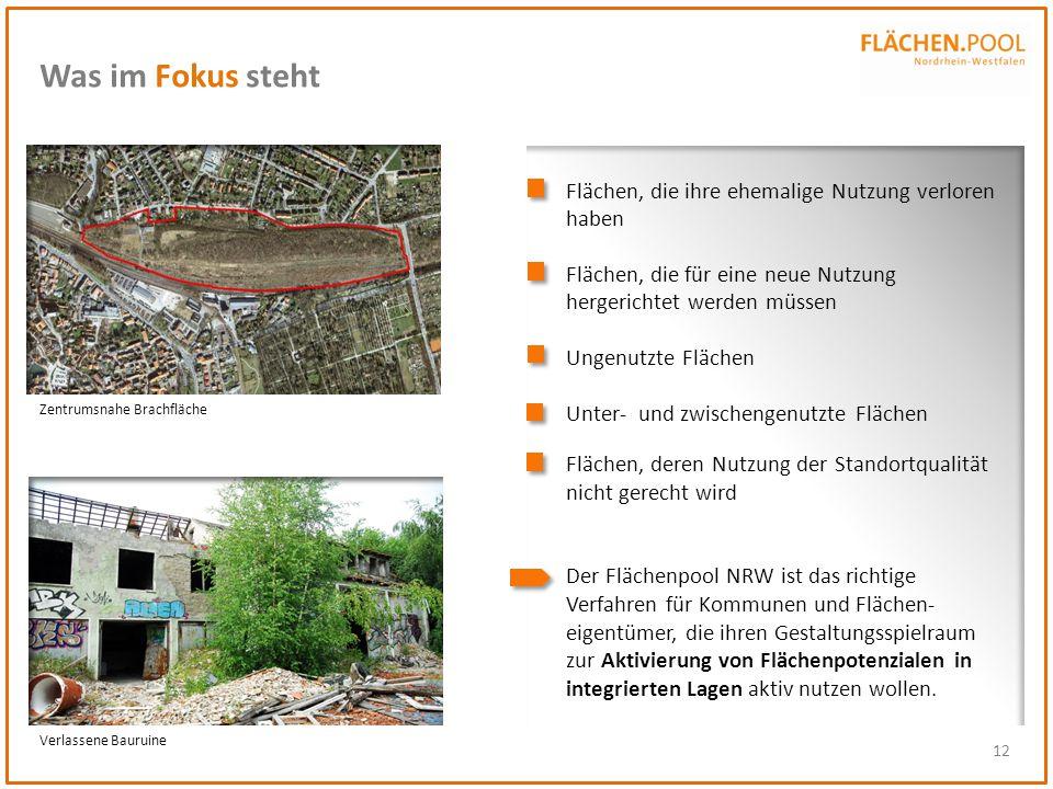 12 Was im Fokus steht Flächen, die ihre ehemalige Nutzung verloren haben Flächen, die für eine neue Nutzung hergerichtet werden müssen Ungenutzte Fläc